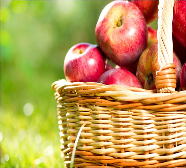 apple-basket-on-grass.jpg