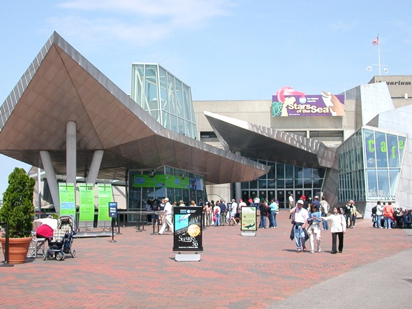 Boston-NewEngland-Aquarium.jpg